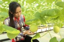 KH&CN thúc đẩy phát triển nông nghiệp công nghiệp hóa hành lang đường Hồ Chí Minh vùng Bắc Trung Bộ